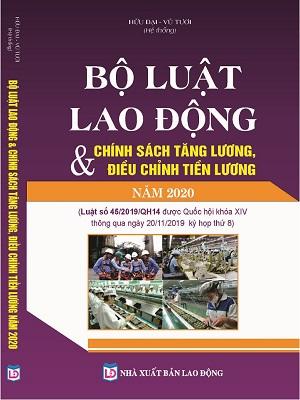 Bộ Luật Lao Động & Chính Sách Tăng Lương, Điều Chỉnh Tiền Lương Năm 2020